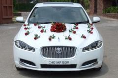 jaguar-wedding-car-chandigarh